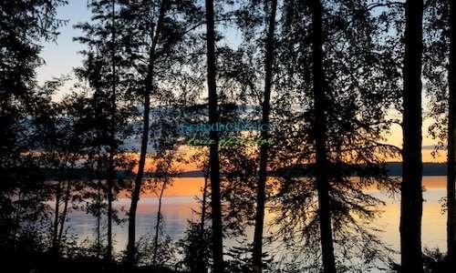 Midnight sun safari in Lapland