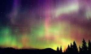Aurora Borealis tour in Lapland