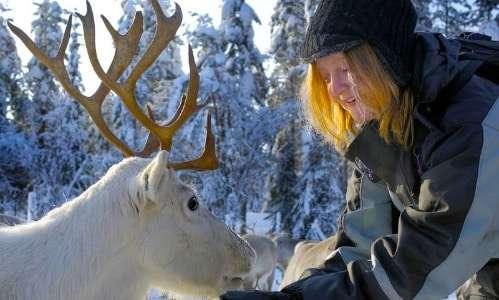 Snowmobiles to a reindeer farm